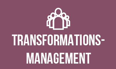 Icon_Transformationsmanagement